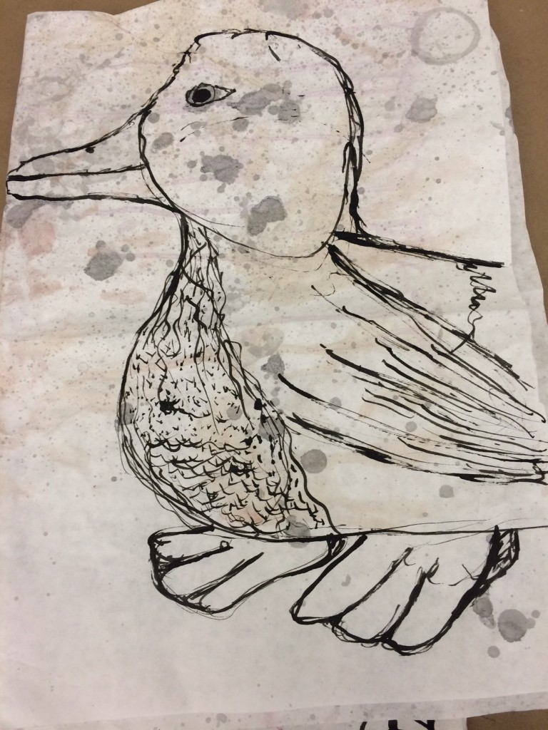 duck drawing by 8th grader