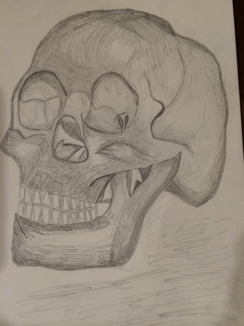 sketchbook human skull in pencil on paper