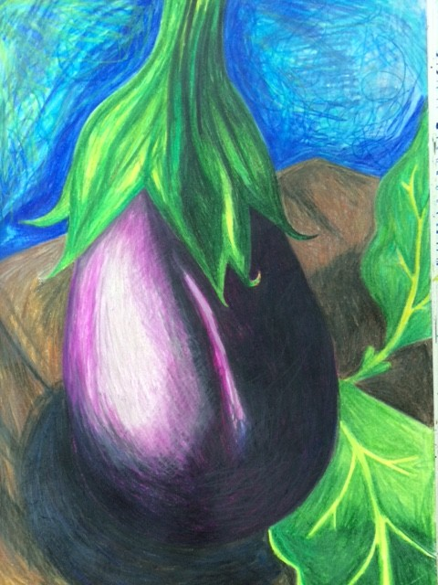 Eggplant pencil drawing